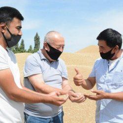 Жатва–2020.  Высокий урожай ферганских хлеборобов. Земледельцы области успешно выполнили  договорный план по зерну